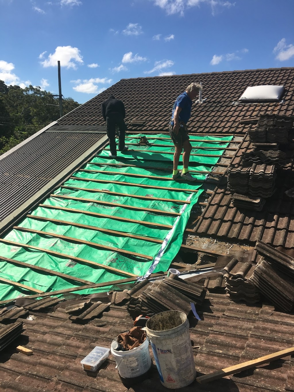 THE SYDNEY ROOF DOCTOR (@thesydneyroofdoctor) Cover Image