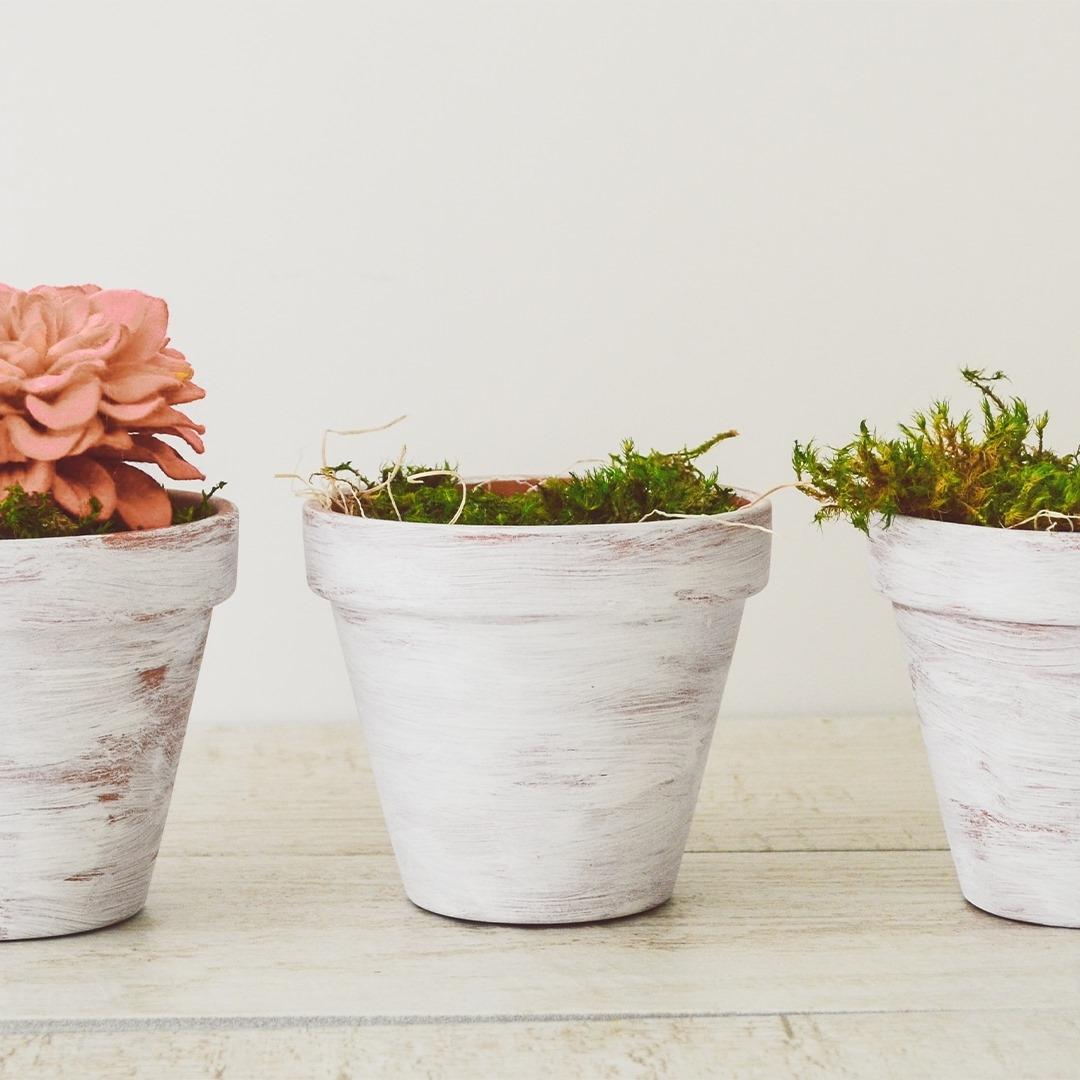 Floral Decor Imports LLC (@floraldecorimports) Cover Image