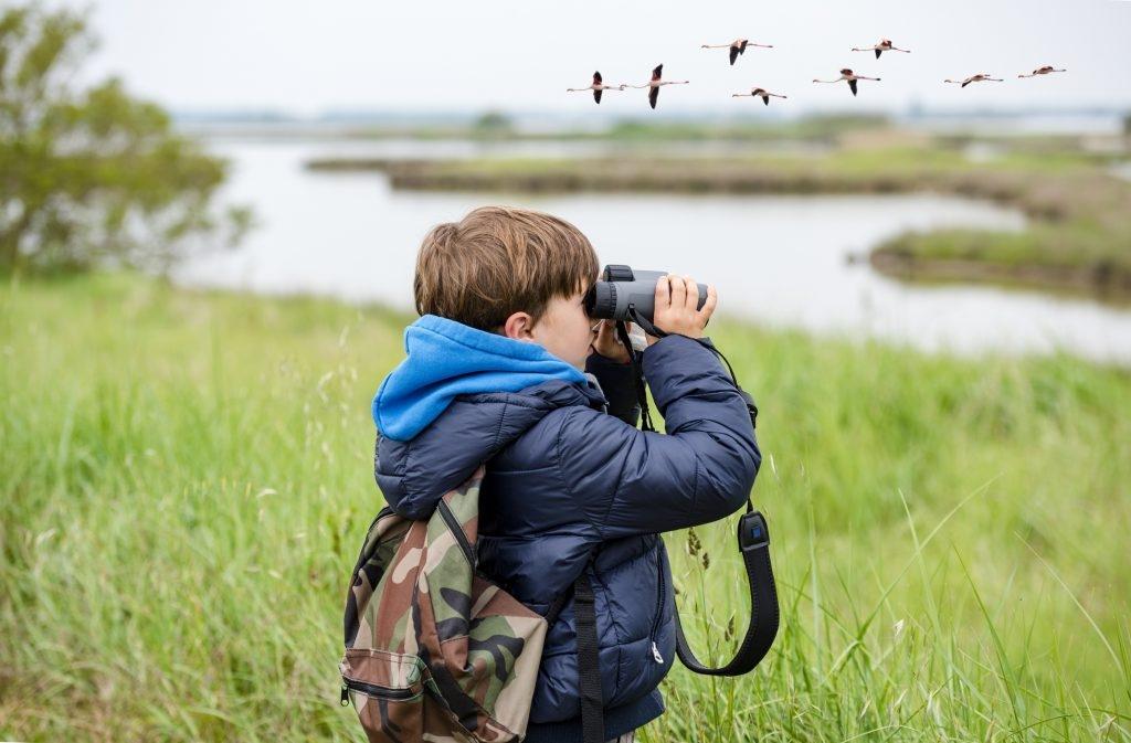 Binoculars (@binoculars1) Cover Image