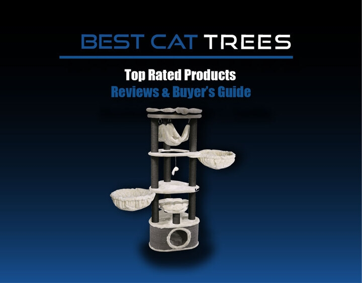 Best Cat Tree For Large Cats (@bestcattre) Cover Image
