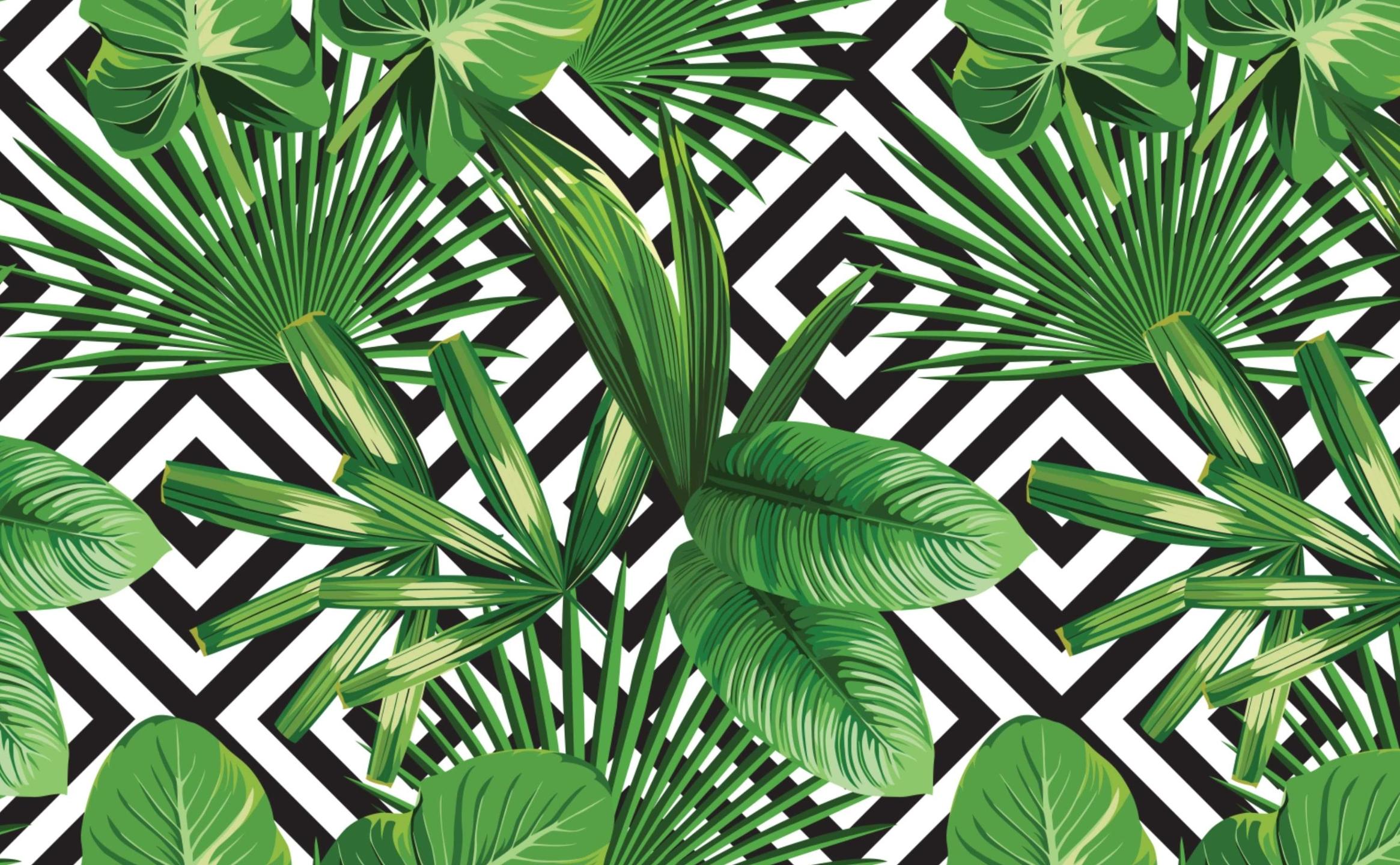 PamelaJO (@pamjo) Cover Image