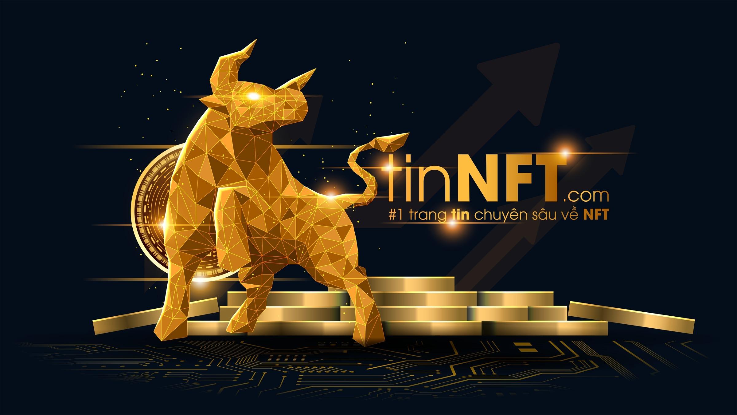 TinNFT.com (@tinnft) Cover Image