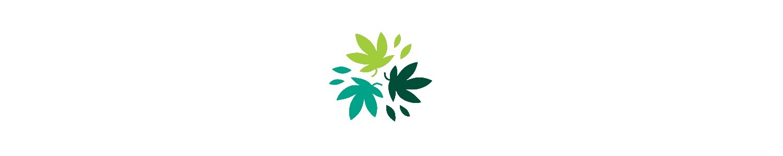 Weed Plug Inc (@weedplugcom) Cover Image