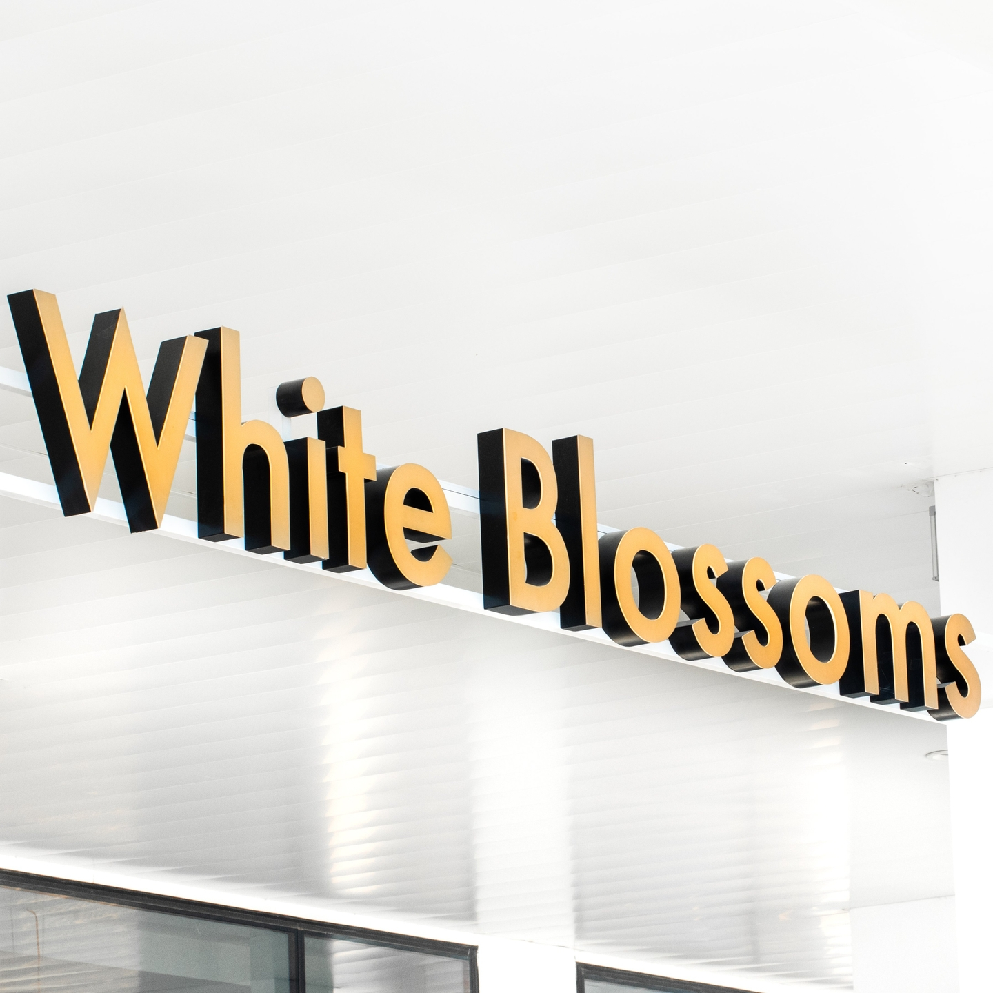 White Blossoms Flower Boutique (@white_blossoms) Cover Image