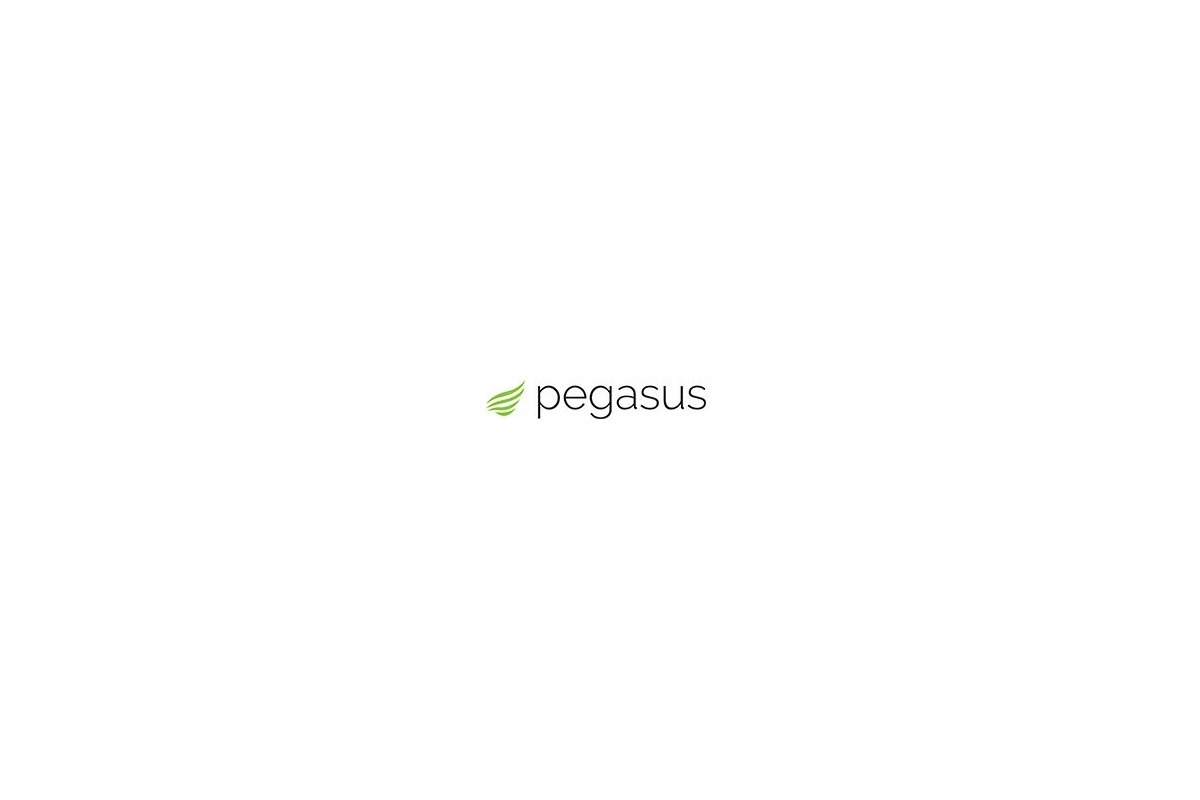 Pegasus Systems (@stevearcher123) Cover Image