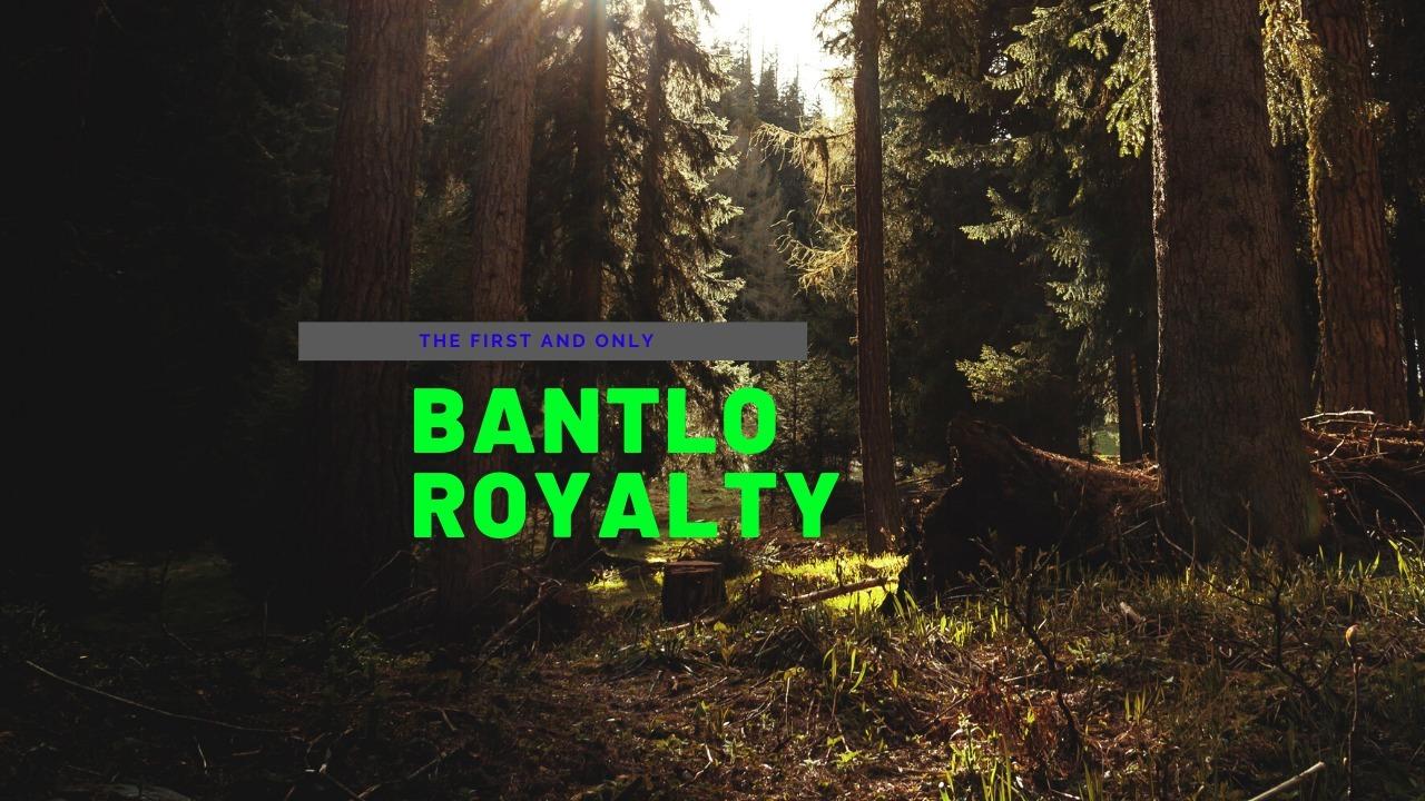 B (@bantlo) Cover Image