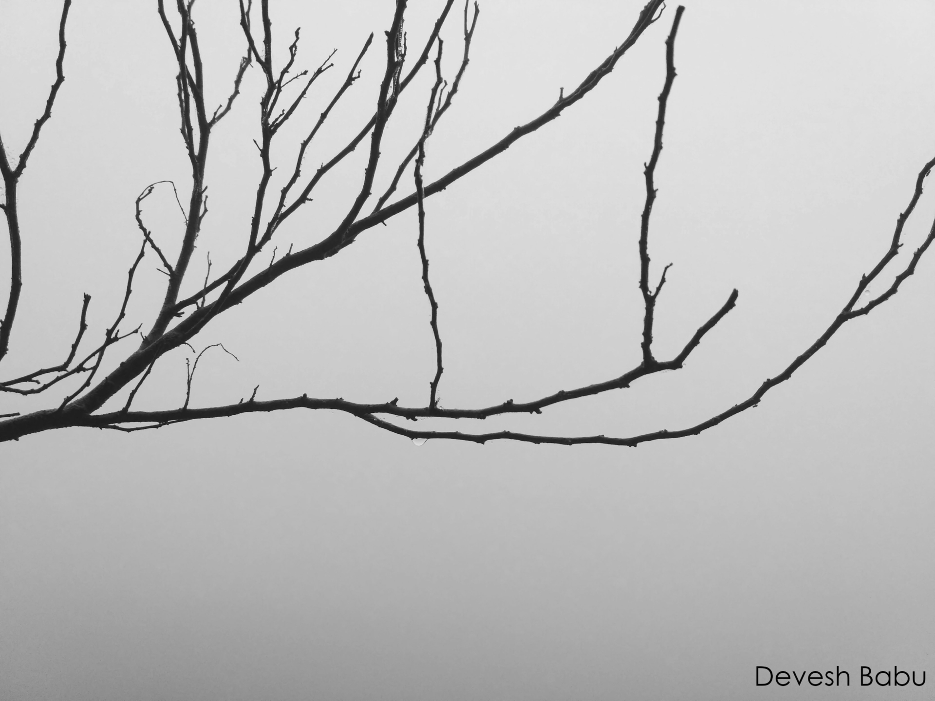 Devesh Babu (@deveshbabu) Cover Image