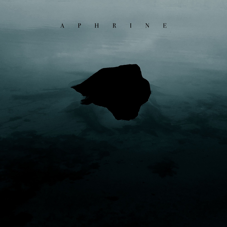 Paul Kwitek (@paulkwitek) Cover Image