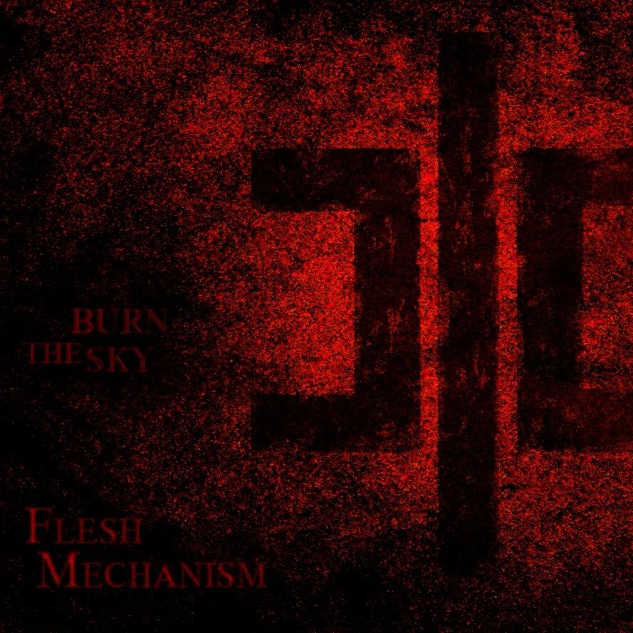 PAUL  (@mechanism6) Cover Image