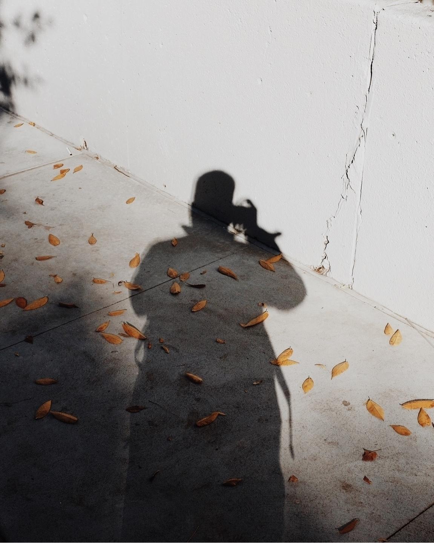 Derek Cortes (@derekcortes) Cover Image